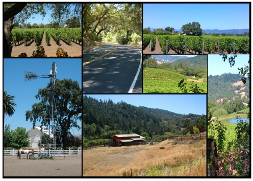 Wine Country Collage